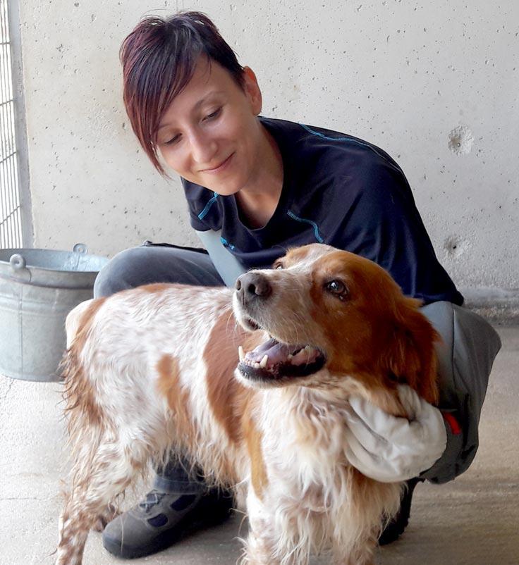 volontariato associazione canili roma