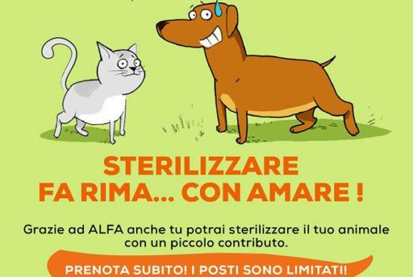 Campagna sterilizzazioni