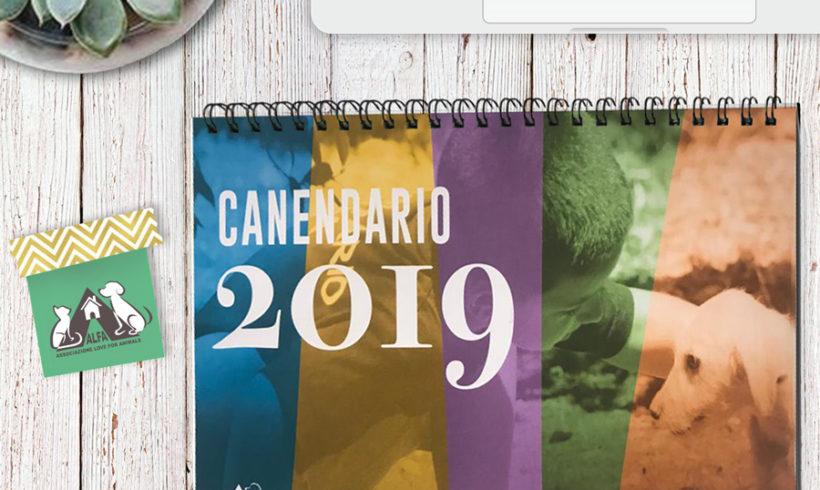 Canendario 2019 – Vincitori