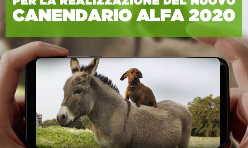 CANENDARIO 2020: VII Edizione del concorso fotografico