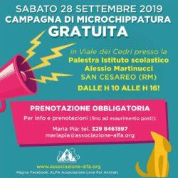 Campagna di microchippatura gratuita – San Cesareo (RM)