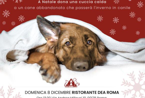 Roma, 8 dicembre: Pranzo di beneficenza