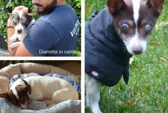 Dianetta oggi a casa