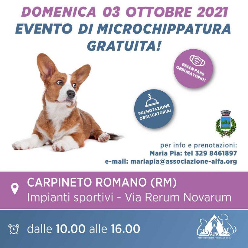 Evento di microchippatura gratuita: 03 ottobre a Carpineto Romano