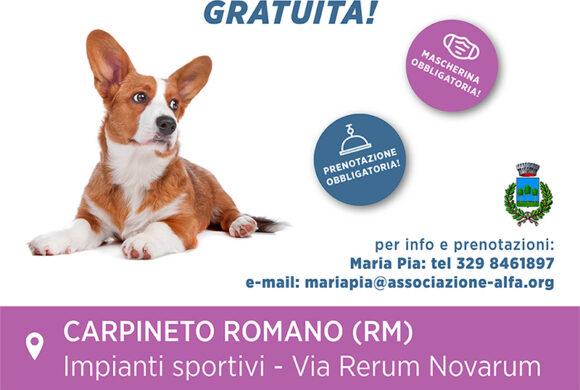 Campagna di microchippatura gratuita: 15 Novembre Carpineto