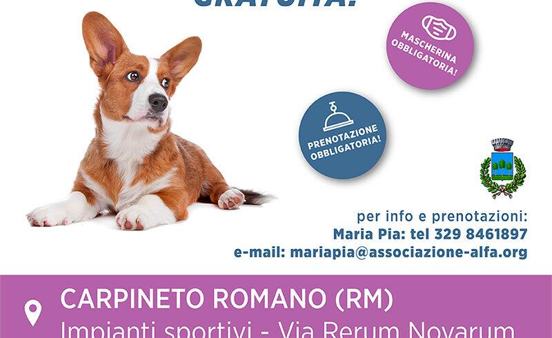 Campagna di microchippatura gratuita: 15 Novrembre Carpineto