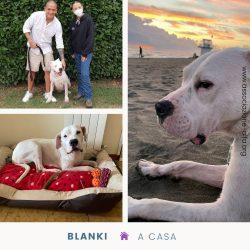 Blanki ora si chiama Blanca!